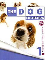 The Dog collection № 1 : Кавалер-Кинг-Чарльз Спаниель