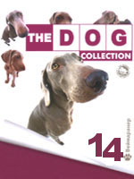 The Dog collection № 14 : Веймаранер