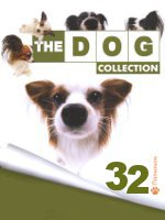 The Dog collection № 32 : Папильон