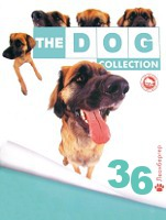 The Dog collection № 36 : Леонбергер