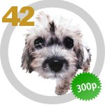 The Dog Collection 42 выпуск