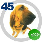 The Dog Collection 45 выпуск