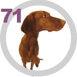 The Dog Collection 71 выпуск